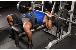 3 bài tập gym cơ bản bạn nên thử sức